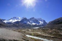 Columbia Icefield, Rocky Mountains, Alberta, Kanada Royaltyfri Bild