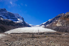 Columbia Icefield, Rocky Mountains, Alberta, Kanada Royaltyfria Bilder