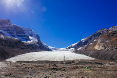 Columbia Icefield, Rocky Mountains, Alberta, Kanada Royaltyfri Foto