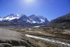 Columbia Icefield, Rocky Mountains, Alberta, Kanada Royaltyfria Foton