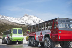 Columbia icefield, snow-coach Stock Image