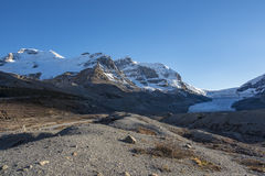 Free Columbia Icefields Stock Photography - 63690682