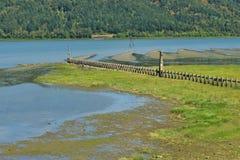 Columbia River Ansicht Lizenzfreie Stockfotografie