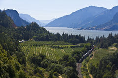Columbia River Gorge Stock Photos