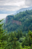 Columbia River Gorge Forest Royalty Free Stock Photo