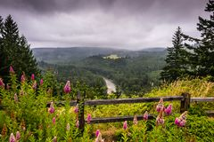 The Columbia River Gorge National Recreation Area stock images