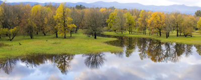 Columbia River Gorge Wetlands Reflection. Columbia River Gorge National Scenic Area Wetlands Reflection in Fall Colors Panorama stock images