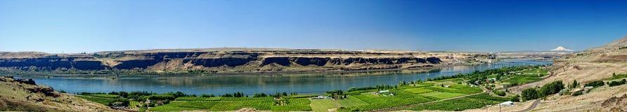 Columbia River Panorama. Panoramic view of the Columbia River shot from Maryhill, Washington royalty free stock image