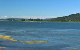 Columbia river view Stock Photography