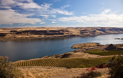 Columbia River from Washington Royalty Free Stock Image