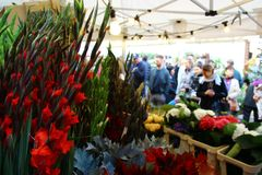 Columbia road flower market in london royalty free stock images