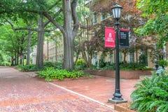 Campus Walkway and School Banner at University of South Carolina