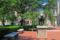 Columbia University Campus Royalty Free Stock Photos