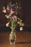 Columbine bouquet Royalty Free Stock Images