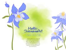 A Columbine flower on a green watercolor background. The flowers. In the botanical style, minimalistic design. Place for the inscription. Hello summer Stock Royalty Free Stock Photography