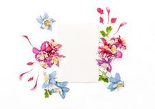 Columbines flower frame empty sketchbook Flat lay Stock Photos