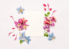 Columbines flower wreath with empty skatchbook. Flat lay Royalty Free Stock Image