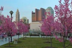 Columbus céntrica, Ohio con los brotes rojos florecientes Fotos de archivo