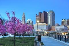 Columbus céntrica, Ohio con los brotes rojos florecientes Imagenes de archivo