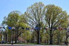 Columbus Circle in Washington DC Fotografia Stock Libera da Diritti