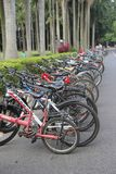 In a column of bikes outside of university library Stock Photos