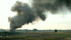 Column of black smoke in sky above field or meadow. This is fire, burns agricultural debris or explosion.