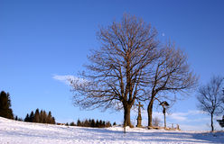 Column Of The Crucification. In wintertime evening royalty free stock photos
