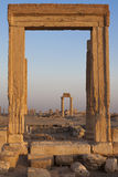 Column frame - Palmyra Royalty Free Stock Photo