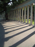 Column gardens at Rosario (Argentina). Gardens at Rosario, Columns' shadows at down royalty free stock image