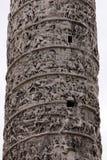 Column of Marcus Aurelius Details Stock Image
