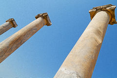 Column in old  temple and theatre in ephesus   antalya turkey as Royalty Free Stock Photo