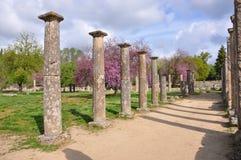 Column of Olympia Royalty Free Stock Photo