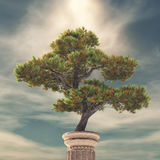 Column and a pine tree. Tree on a column. This is a 3d render illustration Stock Images