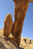 Column Rock at National Park Royalty Free Stock Photography