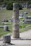 Column of the ruins of Paestum Stock Photo