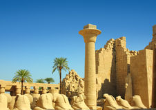 Column and statues of sphinx in karnak temple Royalty Free Stock Photography