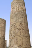 Column at the Temple of Kom Ombo Royalty Free Stock Images