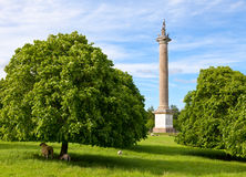 Column of Victory Royalty Free Stock Photos