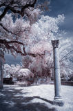 Columna de la imagen infrarroja Foto de archivo libre de regalías