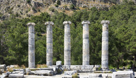Columnas de los ancianos en Priene Fotografía de archivo