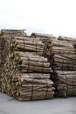 Columnas de madera Imagen de archivo libre de regalías
