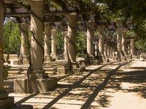 Columnas del viñedo Foto de archivo libre de regalías