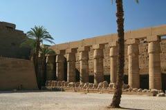 Columnas en el templo de Luxor, Egipto Imágenes de archivo libres de regalías