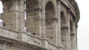 Columnas grises antiguas del coliseo del anfiteatro, edificio histórico en Roma, Italia almacen de video