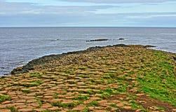 Columnas hexagonales del basalto del terraplén de Giants que llevan abajo en el mar Imágenes de archivo libres de regalías