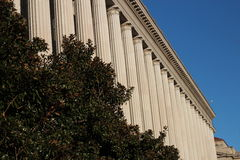 Columnas y árboles dóricos en DC Fotos de archivo libres de regalías