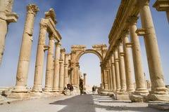 Columnata en las ruinas romanas del Palmyra, Siria Imagen de archivo