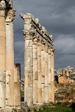 Columned street of Apamea Syria Royalty Free Stock Image