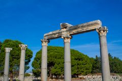 Columns in ancient antique city of Efes, Ephesus ruins. Ancient antique city of Efes Celsus library ruin in Turkey. Ancient Greek city Ephesus ruins on the royalty free stock photography