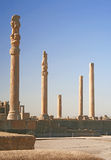 Columns of ancient city of Persepolis, Iran Royalty Free Stock Photos